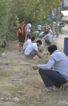 Plantation Drive by Manjil